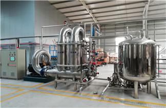 银杏黄酮提取方法 膜设备过滤浓缩纯度高成本低